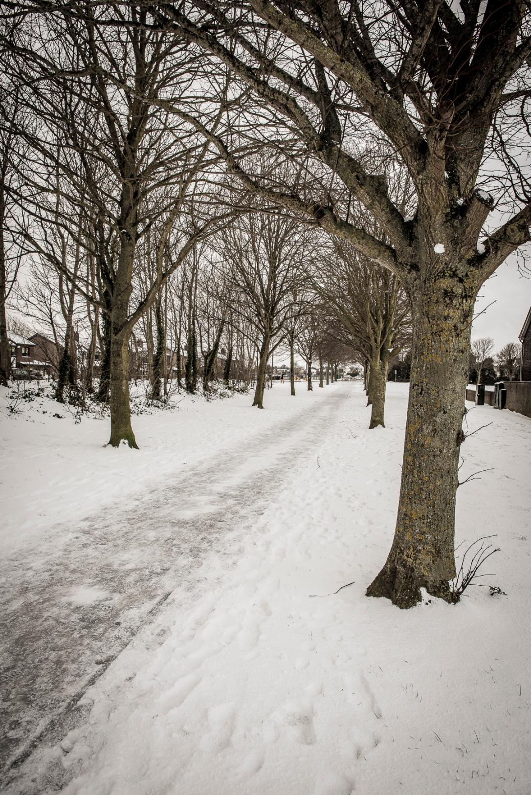 snow-lo-res-3